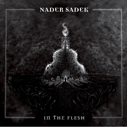 Things You Might Have Missed 2011: Nader Sadek – In the Flesh