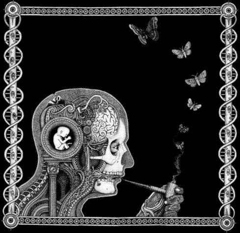 Soen – Cognitive Review