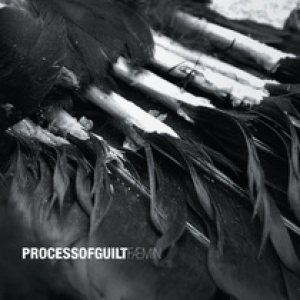 Process of Guilt – Faemin Review