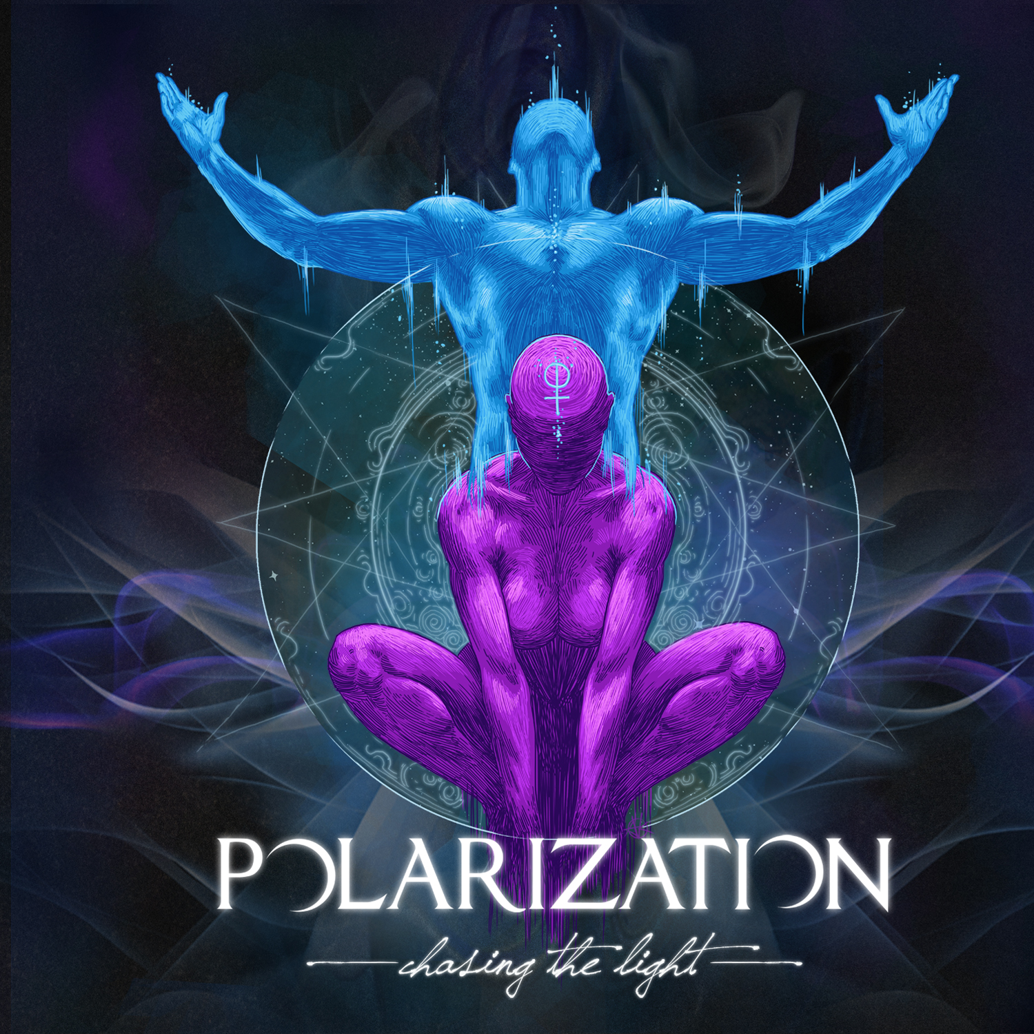 Polarization – Chasing the Light Review