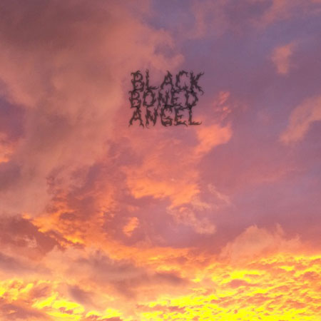 Black Boned Angel – The End Review