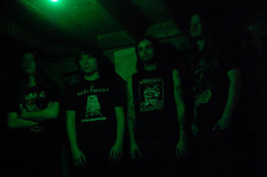 Lycus Band