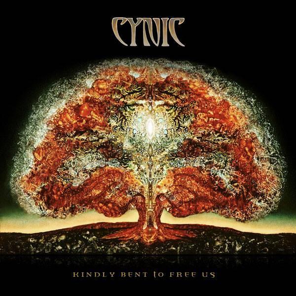 "Cynic Drops ""The Lion's Roar"" Lyric Vid"