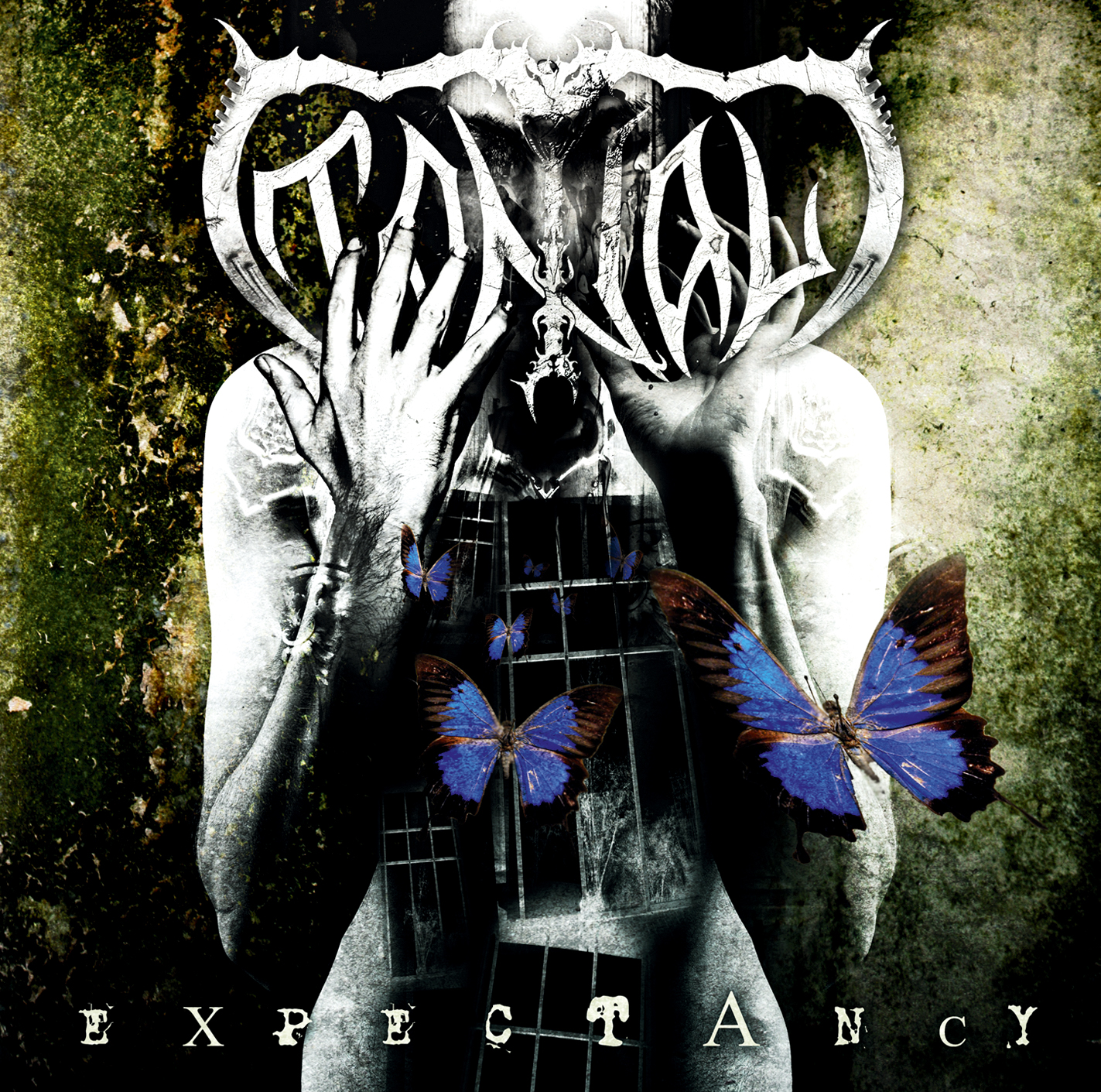 Tantal – Expectancy Review