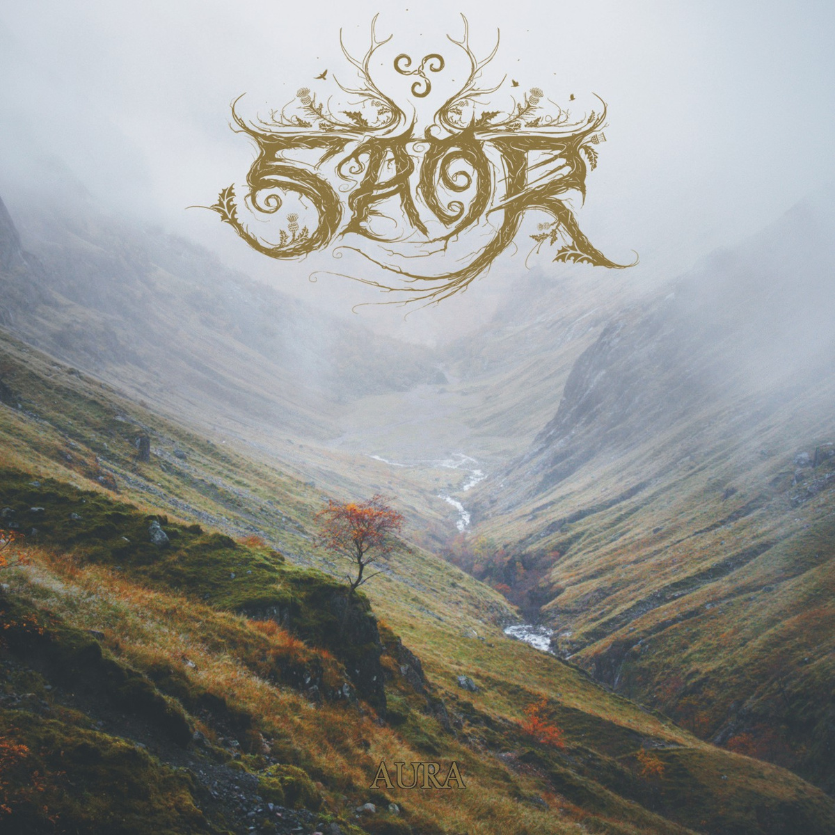 Things You Might Have Missed 2014: Saor – Aura