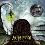 Beardfish - 4626 Comfortzone 01