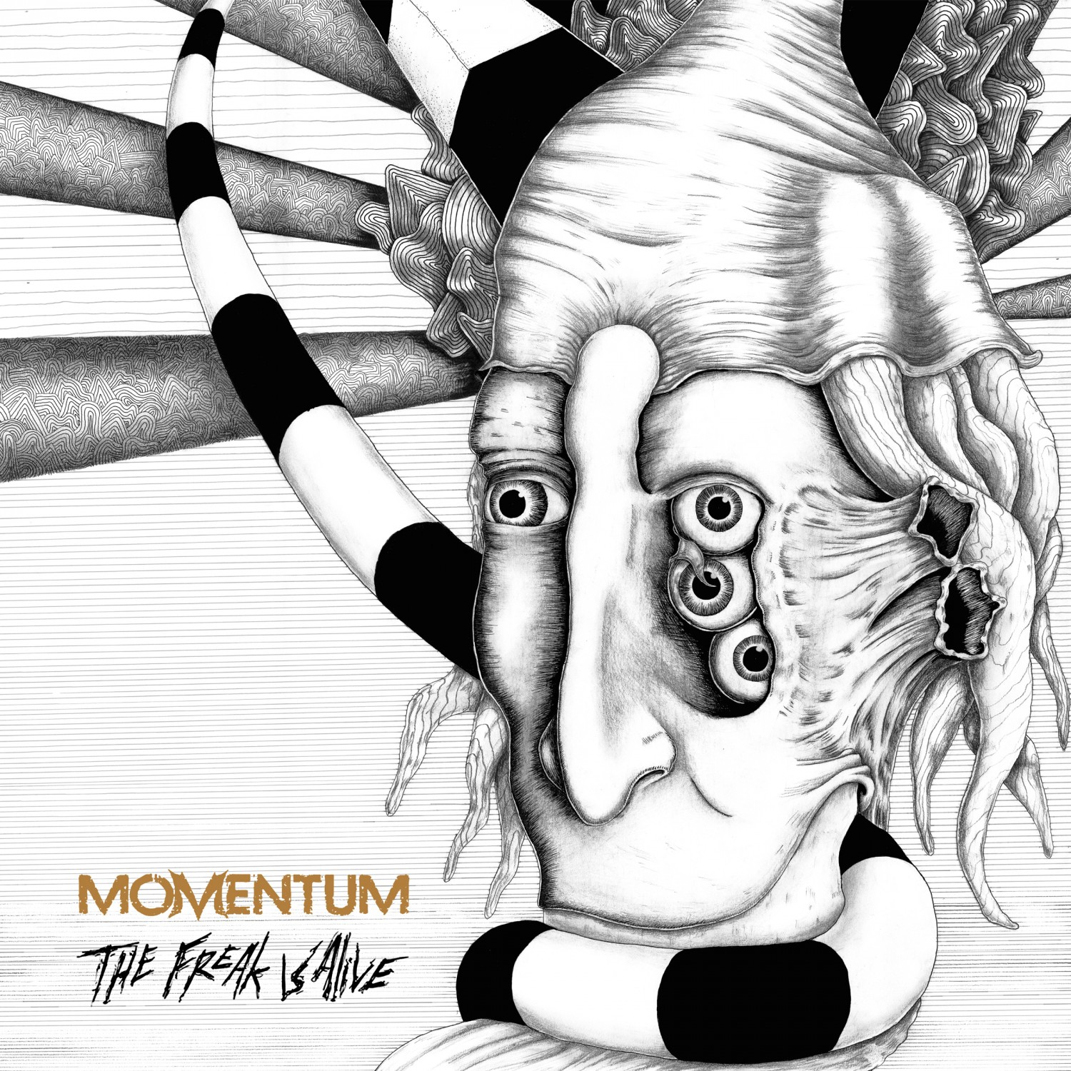 Momentum – The Freak Is Alive Review