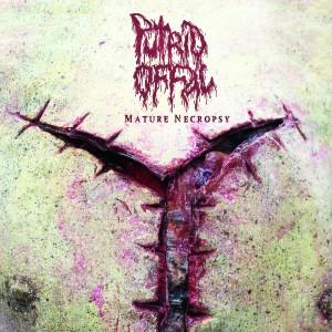 Putrid Offal - Mature Nectopsy 01