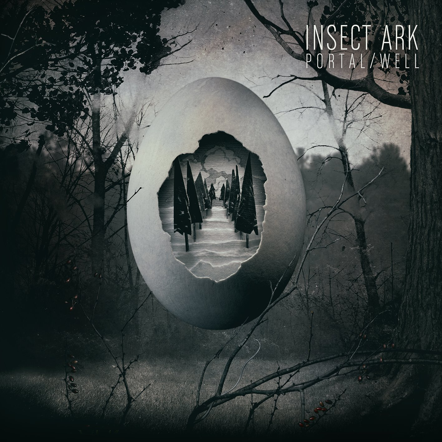 Insect Ark – Portal/Well Review