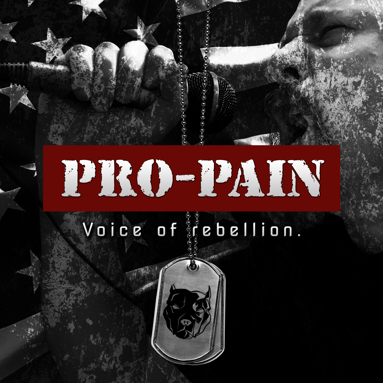 Pro-Pain – Voice of Rebellion Review