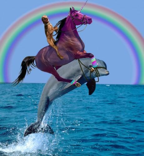 Unicorn dog dolphin