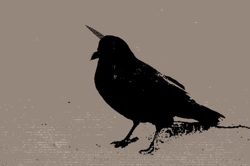 Unicorn Raven