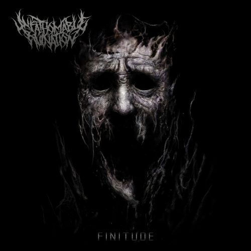 Unfathomabe Ruination - Finitude Cover