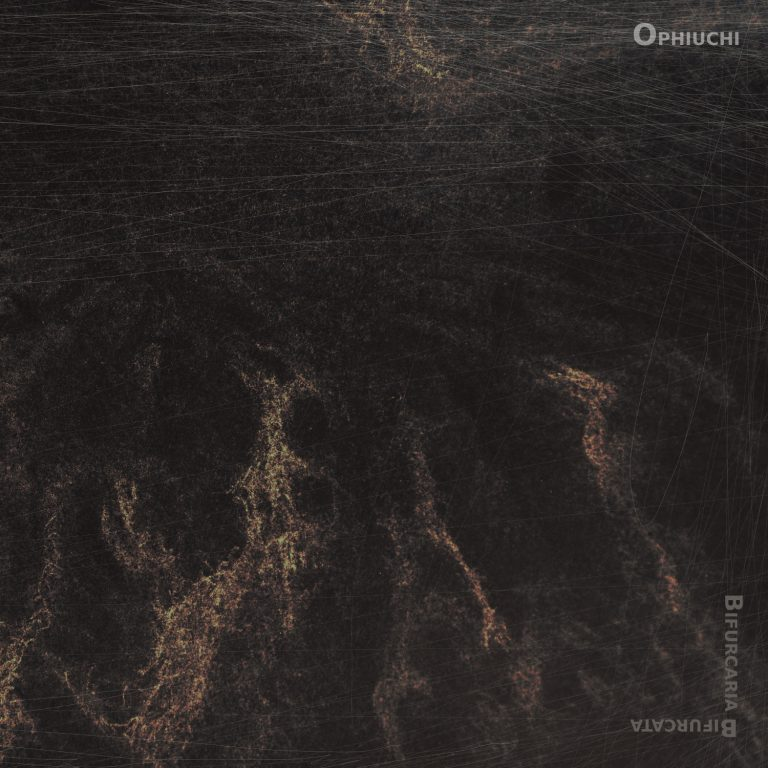 Ophiuchi – Bifurcaria Bifurcata Review