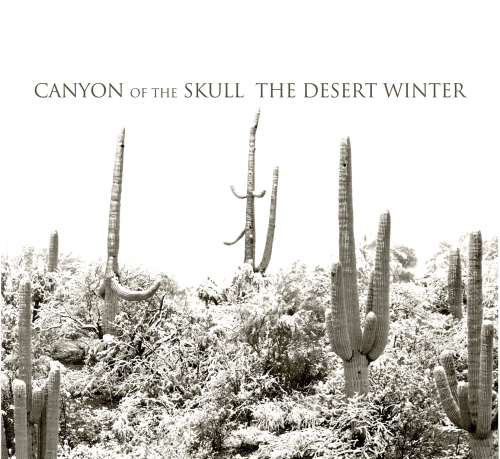 Canyon of the Skull - The Desert Winter 01