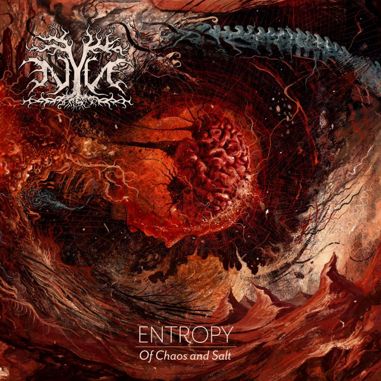 NYN – Entropy: Of Chaos and Salt Review