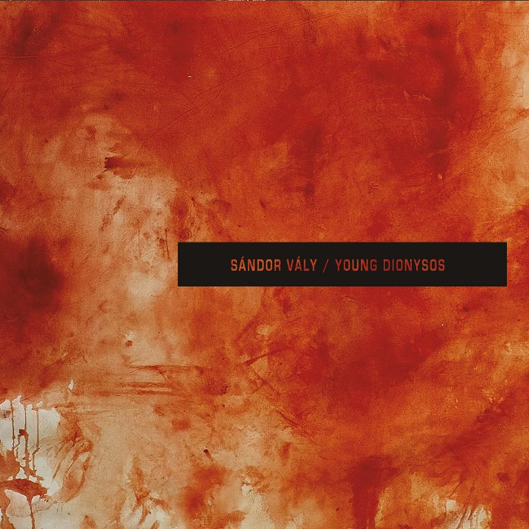 Sándor Vály – Young Dionysos Review