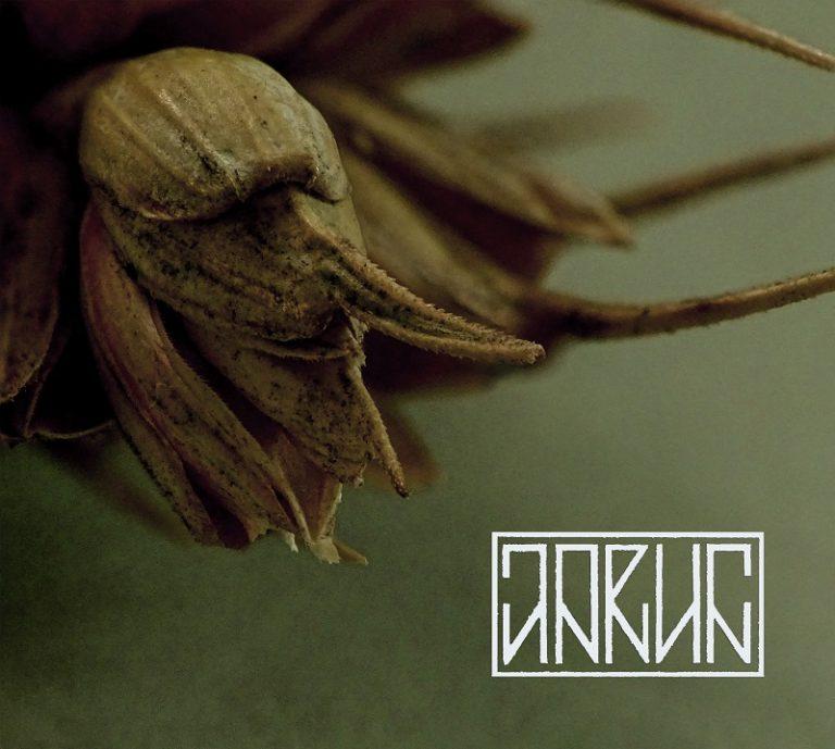 Jarun – Sporysz Review