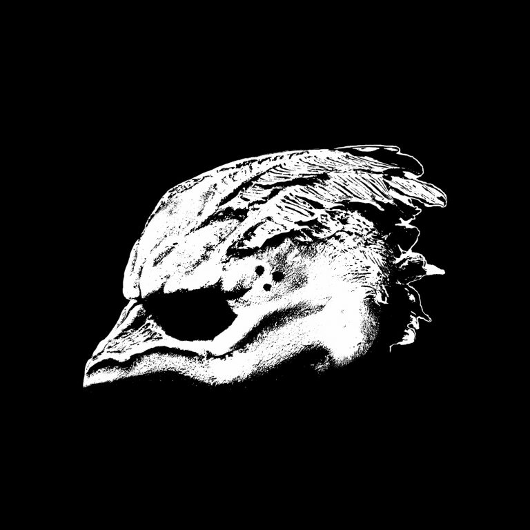 Legend of the Seagullmen – Legend of the Seagullmen Review