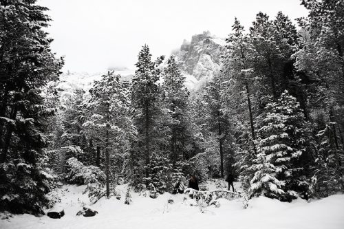 Cân Bardd - Nature Stays Silent 02