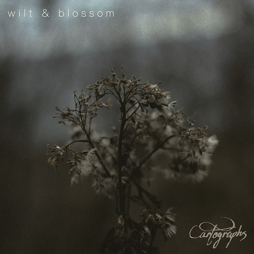 Cartographs – Wilt & Blossom Review