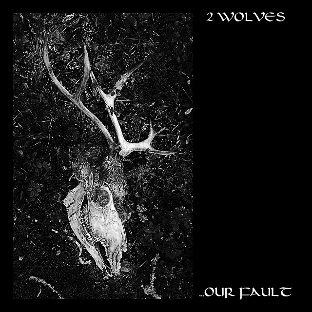 2 Wolves – …Our Fault Review