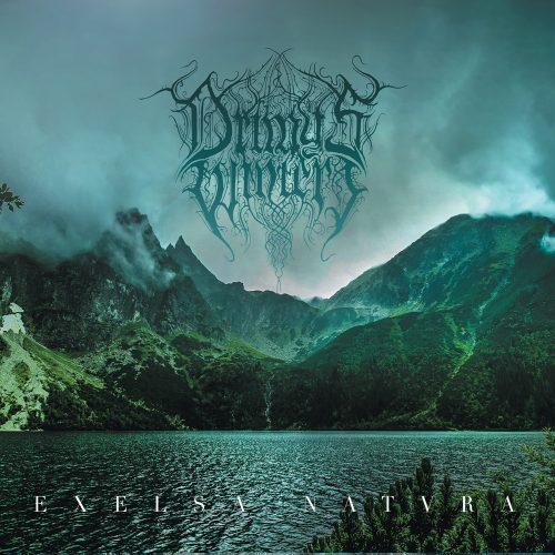 Drimys Winteri - Excelsa Natura 01