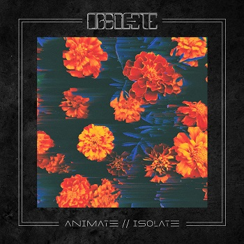 Obsolete – Animate//Isolate Review