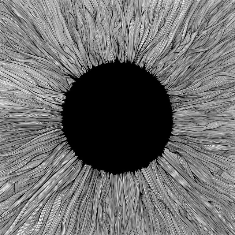 VOLA – Witness Review