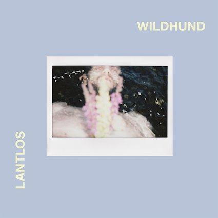 Lantlôs – Wildhund Review